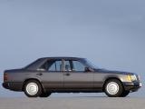 Защита картера W 124 1985-1996 W 124